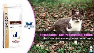 Ветеринарная диета для кошек при нарушениях пищеварения · Royal Canin Gastro Intestinal Feline