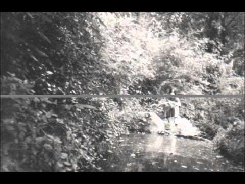wings of crows (original) aestatis - indie unsigned alternative folk lo-fi