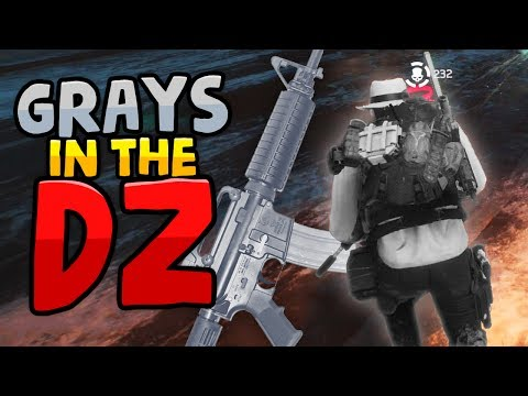 GRAY WEAPONS IN THE DARK ZONE - The Division DZ Funny Moments
