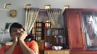 Hẹn ước bồ công anh - Jaychou - Harmonica cover