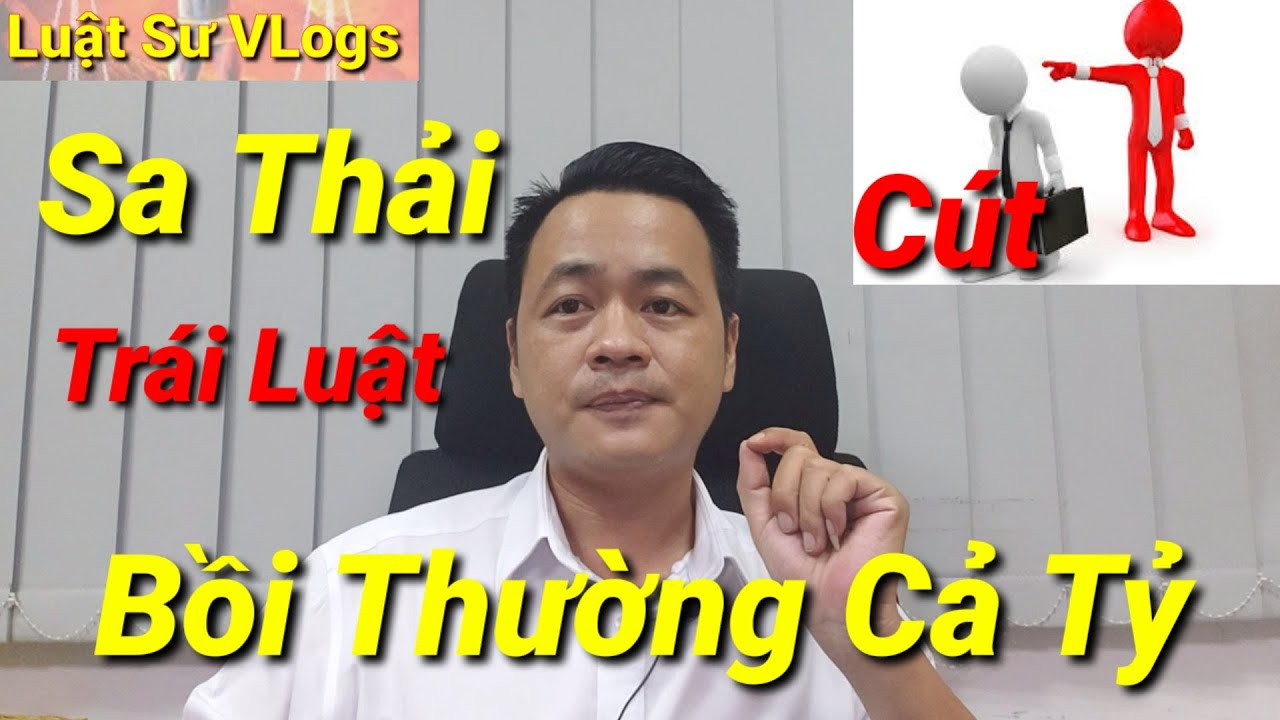 Công Ty Sa Thải Nhân Viên Trái Luật Phải Bồi Thường 300 Triệu Đồng | Luật Sư Vlogs