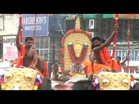 Pooram elephant festival - Thrissur, Kerala