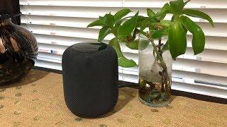 Khui hộp loa thông minh Apple HomePod vừa nhận hàng đúng ngày 9/2 tại Mỹ