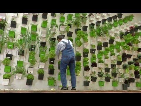 Ecolocos: Un hotel completamente ecológico en Bogotá.