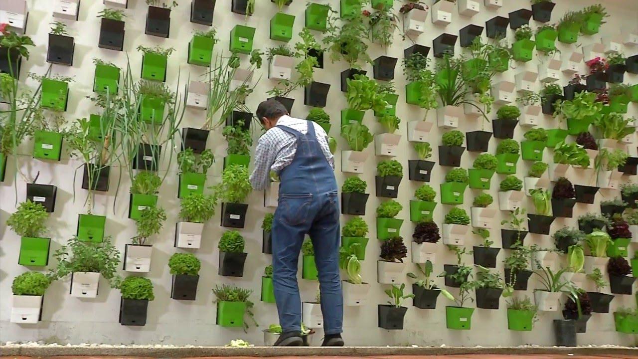 Hotel completamente ecológico en Bogotá