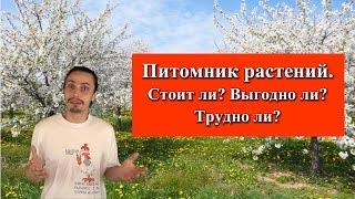 видео Выращивание растений в условиях питомника
