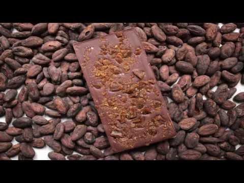 Sölva Chocolates - Startup Reykjavik Investor Day 2016