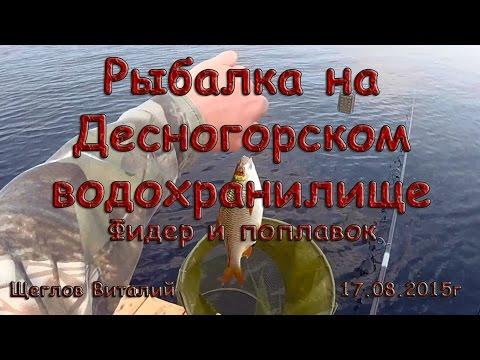 Рыбалка на Десногорском водохранилище. Фидер и поплавок.