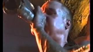 Химера. Выступление в клубе Стортебекер, Гамбург/Chimera. Live in Störtebeker, Hamburg. 30.04.1996