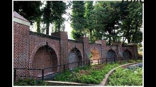 船橋地区紹介動画 『Tohode〜船橋の豊かな野草と花木を巡るコース』