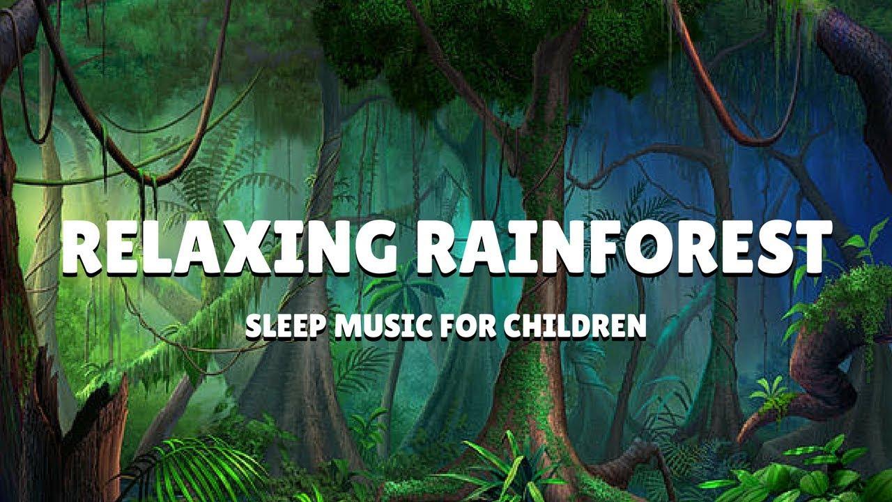 musique relaxation meditation rainforest