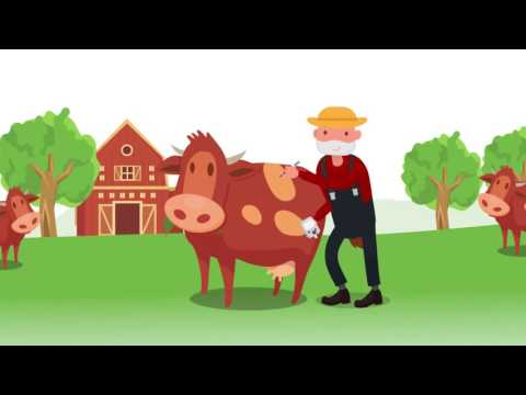 Consumer Food Safety - Bionanotechnology