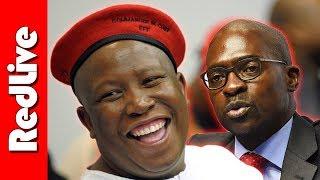 vuclip EFF Julius Malema on Malusi Gigaba's Video