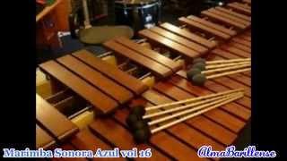 "marimba sonora azul vol 16 Dulce Amor cd completo ""Audio"""