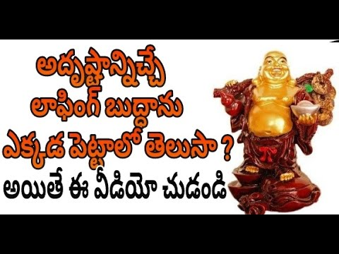 Where to place Laughing Buddha? | Exclusive Video | Feng Shui Buddha | News Mantra