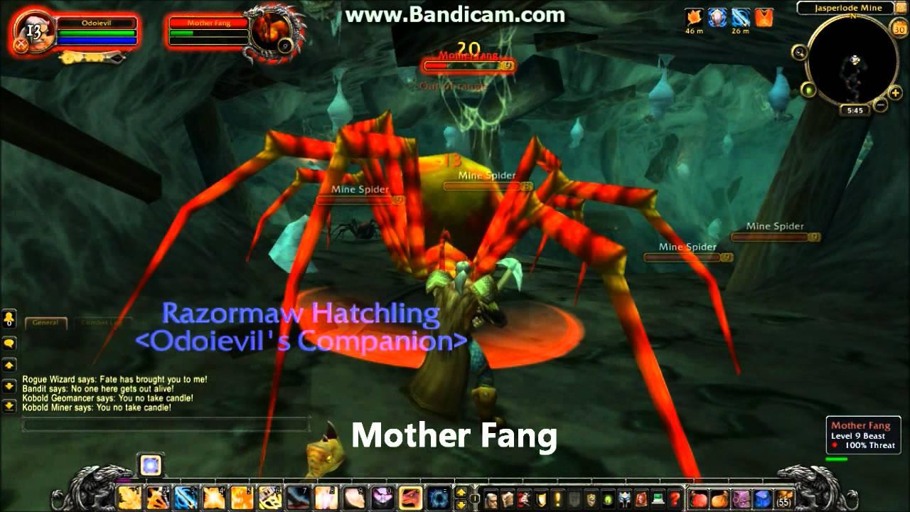World Of Warcraft Rare Spawn Hunter Pets Level 1 20 Youtube