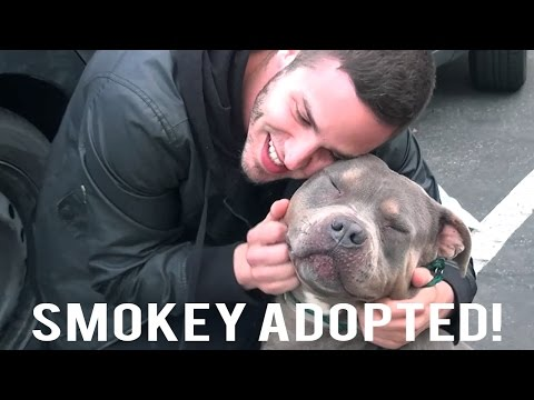 Smokey Adopted!