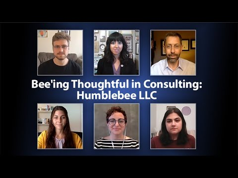 Bee'ing Thoughtful in Consulting: Humblebee LLC