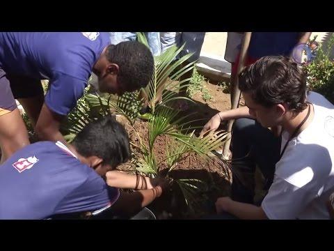 Видео Educação ambiental Implementação em escolas públicas