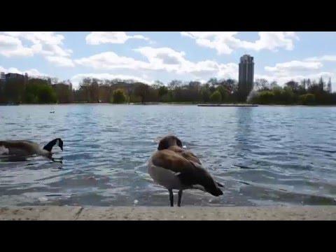 London Trip Part 1 - Hyde Park