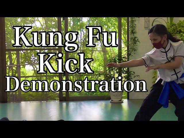 カンフー蹴り技集 Basic Kick demonstration
