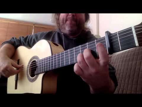 New Glenn Canin Cutaway Blanca Flamenco Guitar