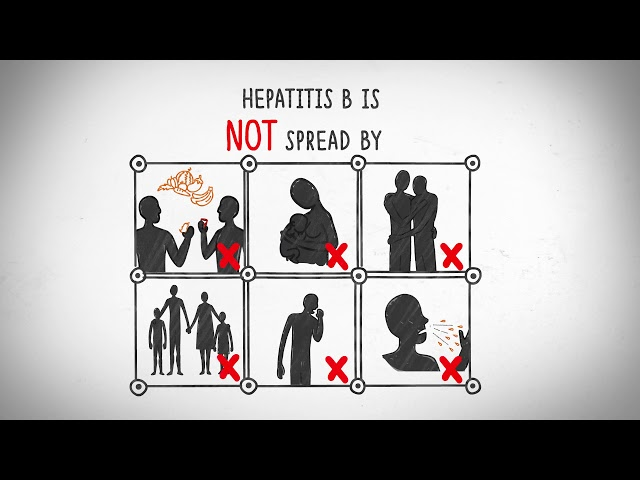 All you need to know about Hepatitis B
