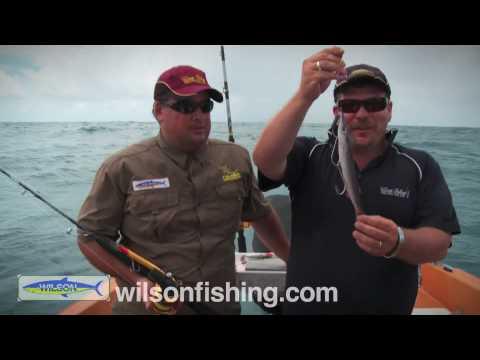 Catching Mackerel