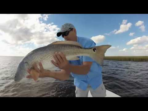 Winyah Bay Redfish South Carolina