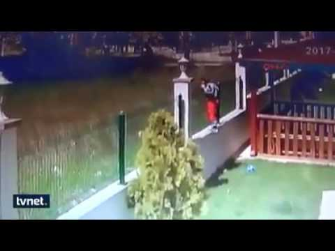 Kid jumps fence and gets attacked by dogs.