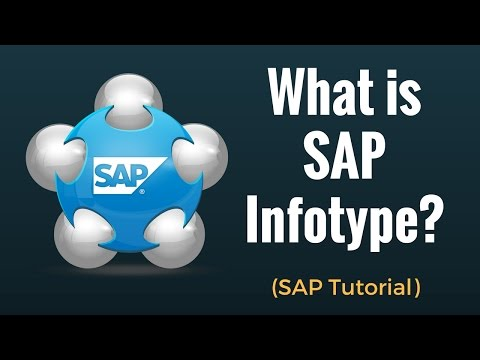 What is SAP Infotype ?
