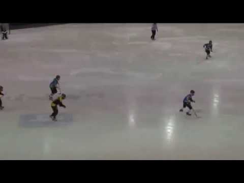 Women Bandy World Cup-2012. AIK (Sweden) - Rekord (Russia) - 0:4
