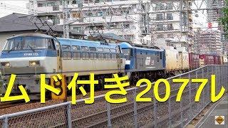JR貨物 EF66 115+EF210-148ムド付き2077レ 新長田・須磨 2019.10.11