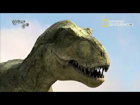 한반도의 공룡 1부재   111228 HDTV 1080i X264 Ac 3
