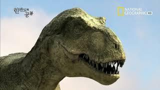 한반도의 공룡 1부재   111228 HDTV 1080…