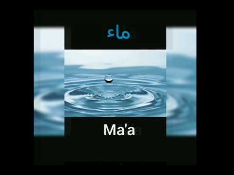 Water-arabic translation