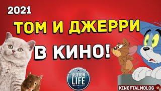 life action ТОМ И ДЖЕРРИ В КИНО! Возвращение оригинального мультфильма 👉 всё что нам известно!