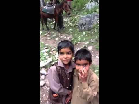 Bakarwal, Kashmir