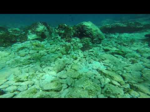 Snorkeling at Moni Island in Aegina (Saronic Islands, Greece). August 2016