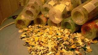LEGO Pick a Brick Haul!