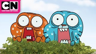 The Amazing World of Gumball | Richard's Double Life | Cartoon Network