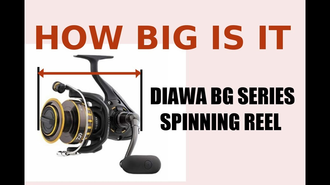 How Are Daiwa Bg Series Spinning Reels Size Review 2500 Model