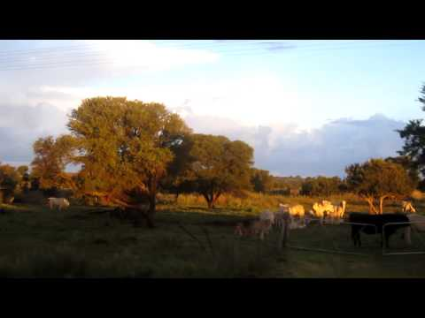 Johannesburg - Cape Town Shosholoza Meyl train journey