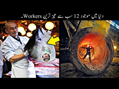12 Fastest Workers In The World Urdu | دنیا کے تیز ترین ورکرز | Haider Tv