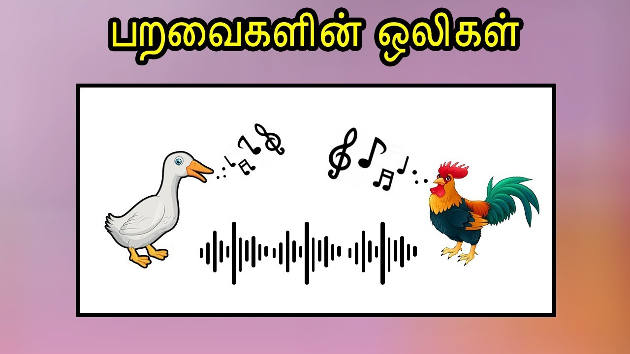 Images of animals and their sounds in tamil