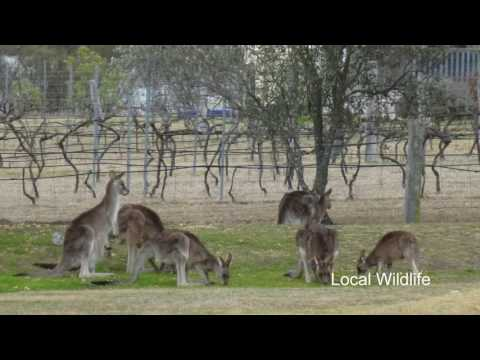 Country Style Caravan Park, Stanthorpe, Queensland, Australia
