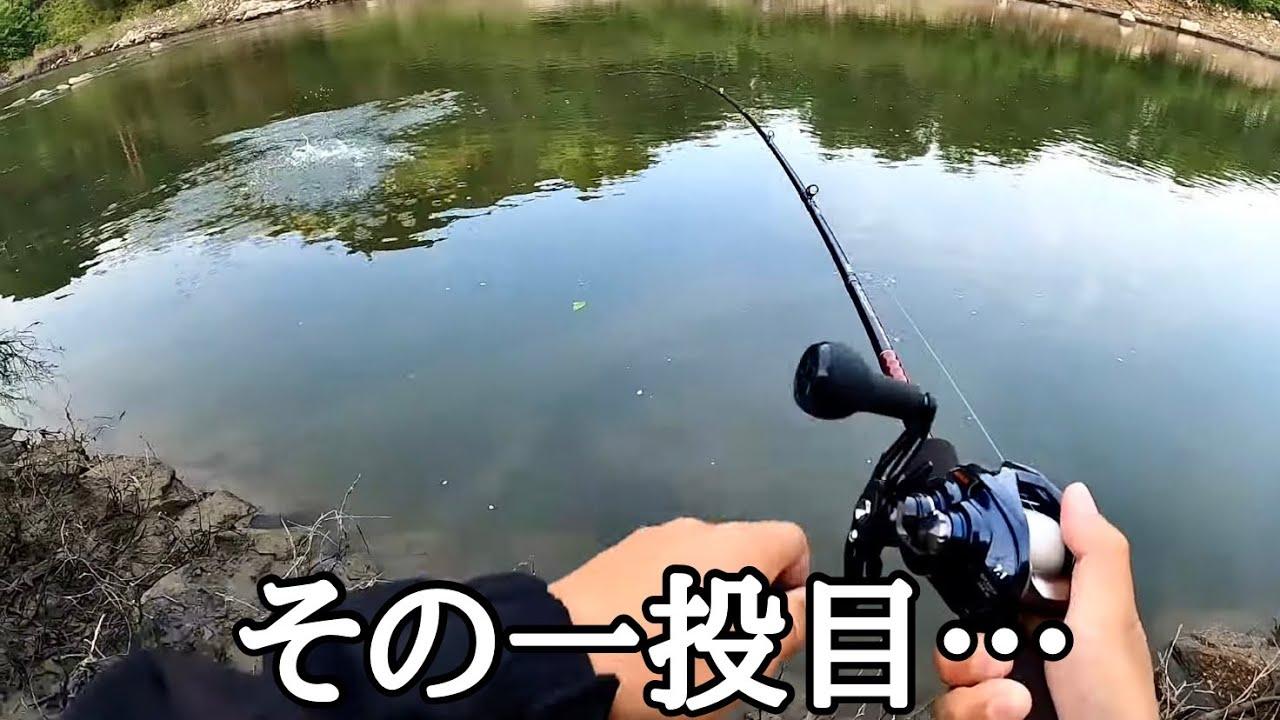 地元の人が反則級に釣れると行ってたルアーを投げてみたら…