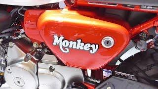 ホンダ 新型 モンキー125 大阪モーターサイクルショー2018 honda monkey 125