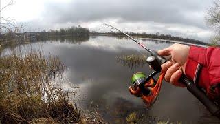Весенний МИКРОДЖИГ Рыбалка на спиннинг с берега в черте города