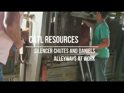 Cow Work Made Easy - Silencer Chutes And Daniels Alleyways At Work